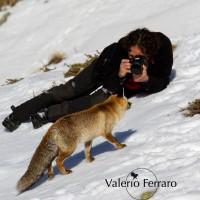 Valerio Ferraro