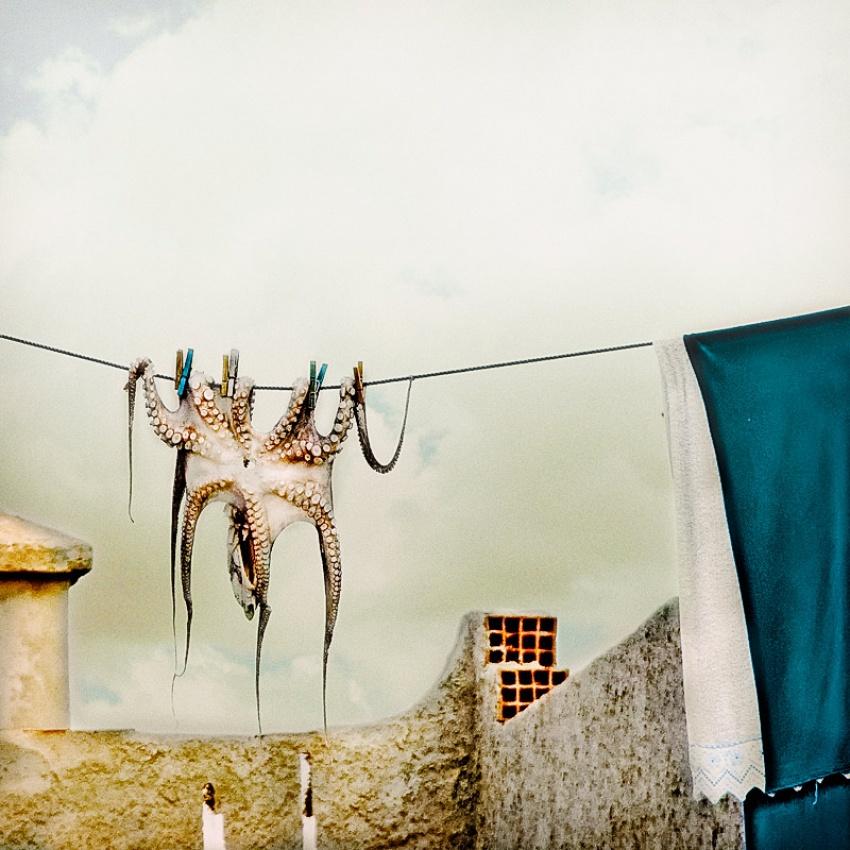 Fotokonst Tote Hose