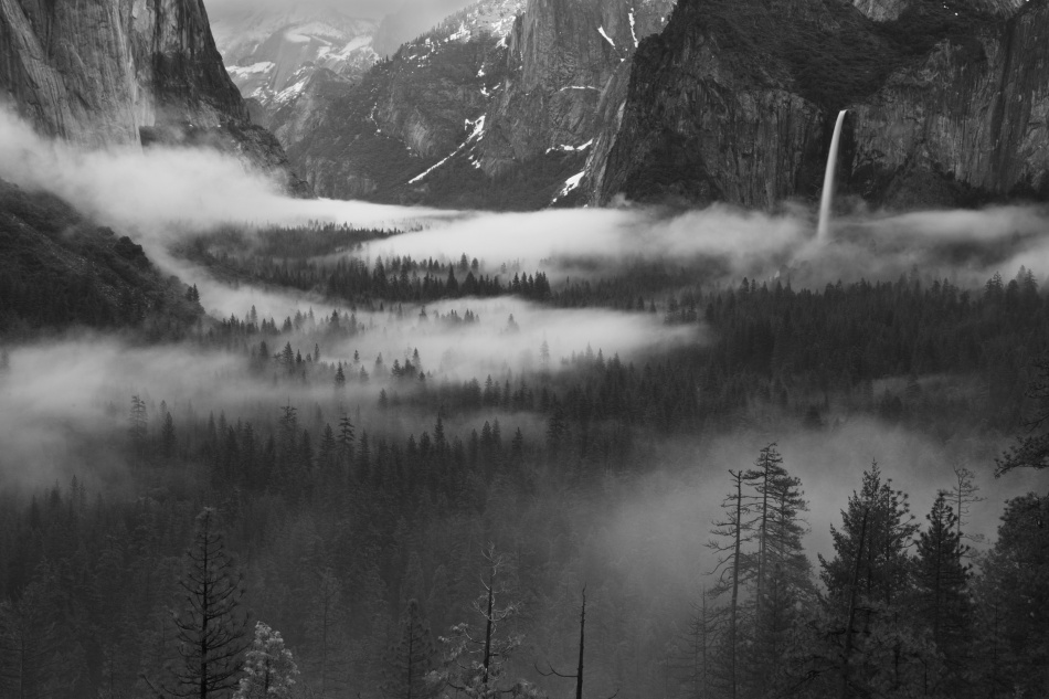 Poster Fog Floating In Yosemite Valley