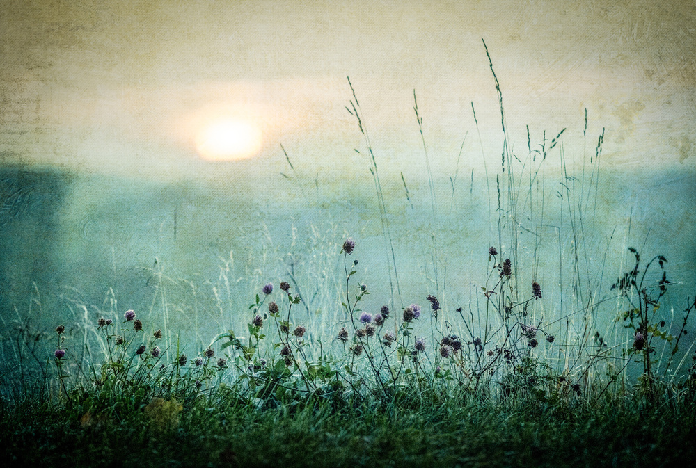Fotokonst Autumn sunrise