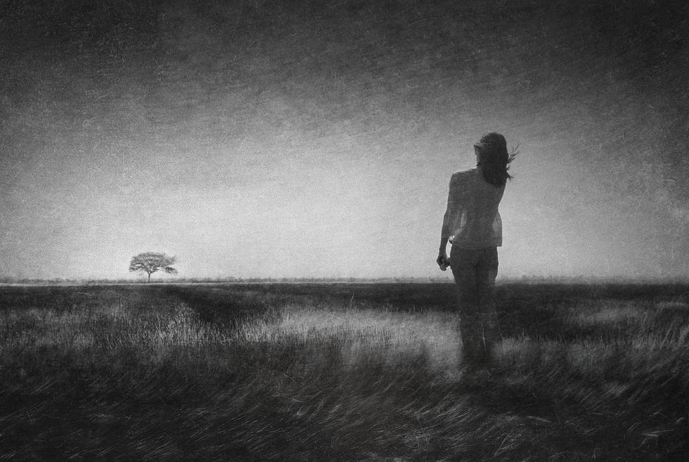 Fotokonst In the field of wind
