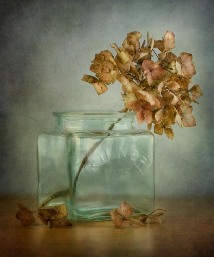 Fotokonst Hydrangea