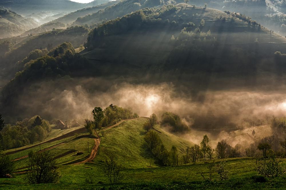 Fotokonst Morning fog