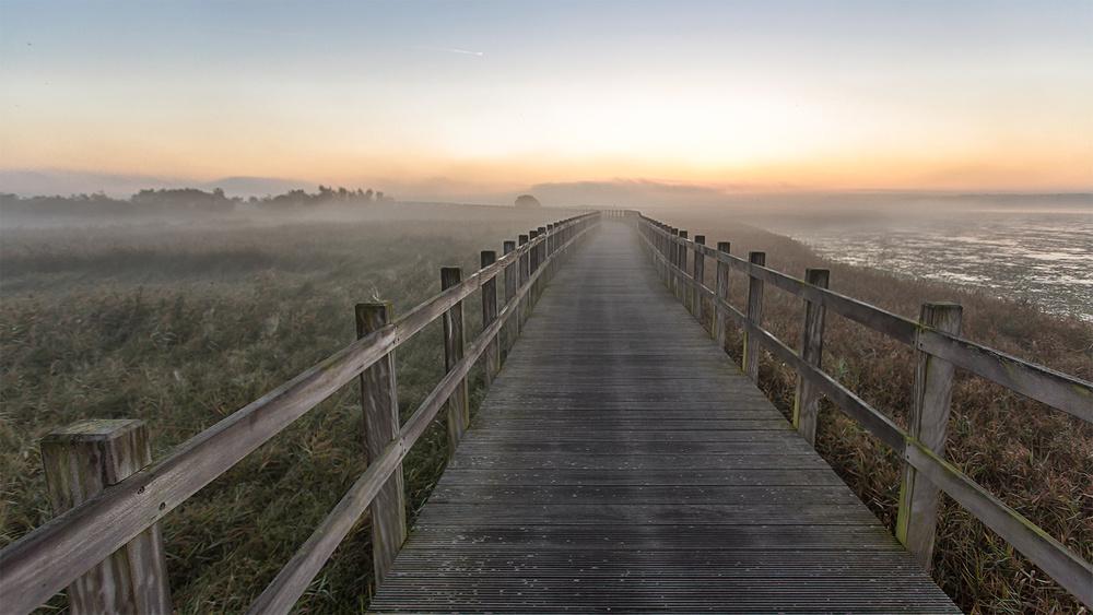 Fotokonst Morning walk.