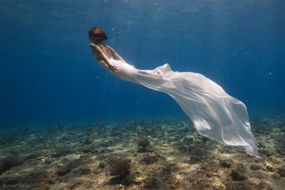 Fotokonst White Dress