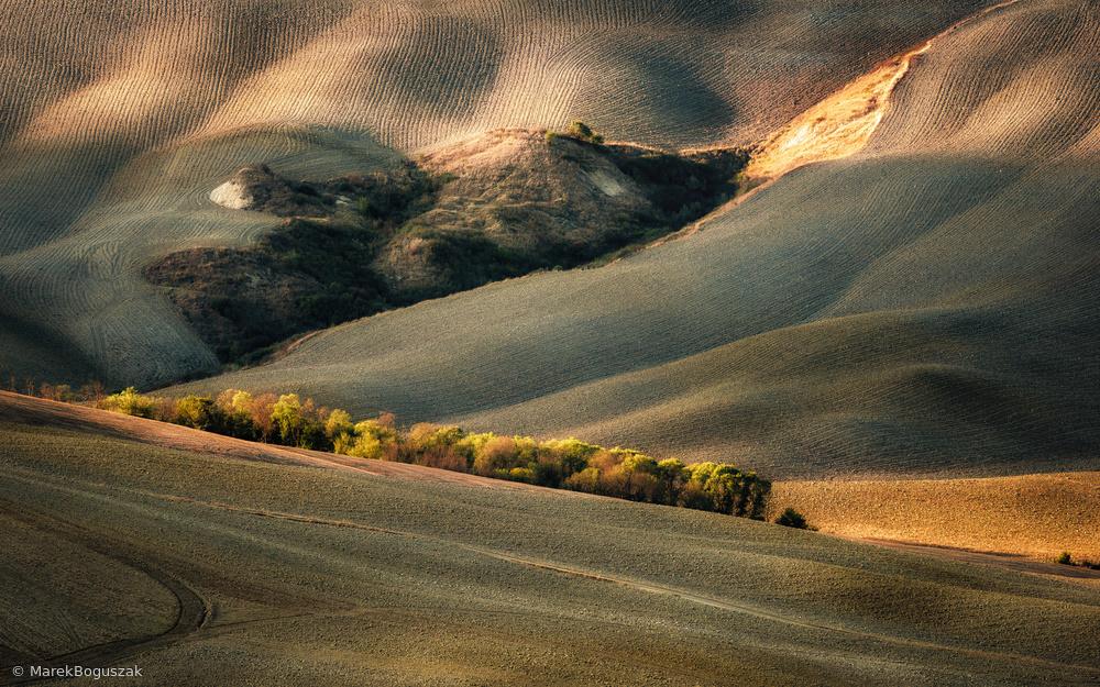 Fotokonst Wild Tuscany