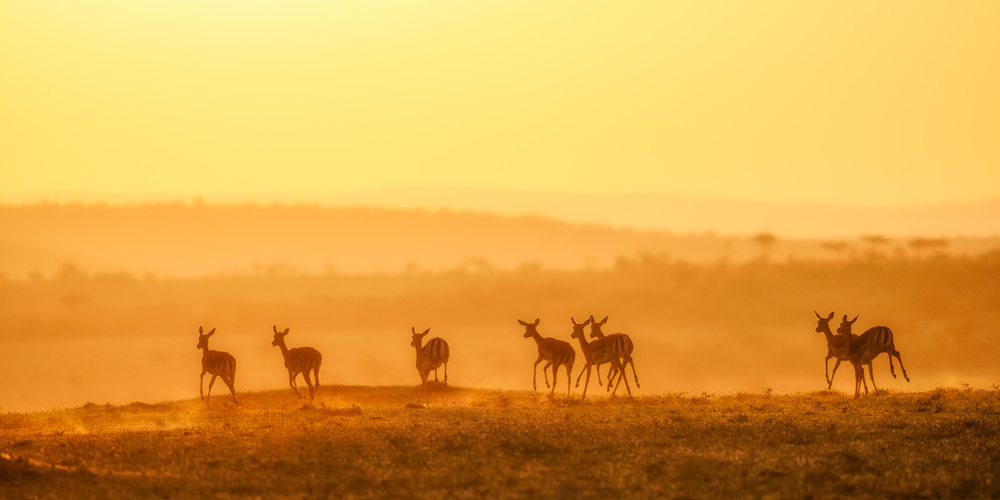 Fotokonst Towards Sunset