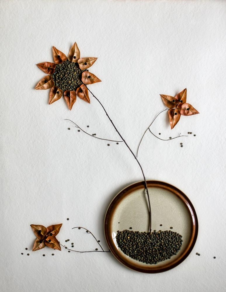 Poster Herbarium...