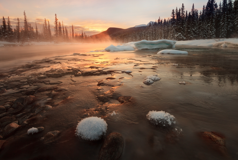 Fotokonst Misty Winter Morning