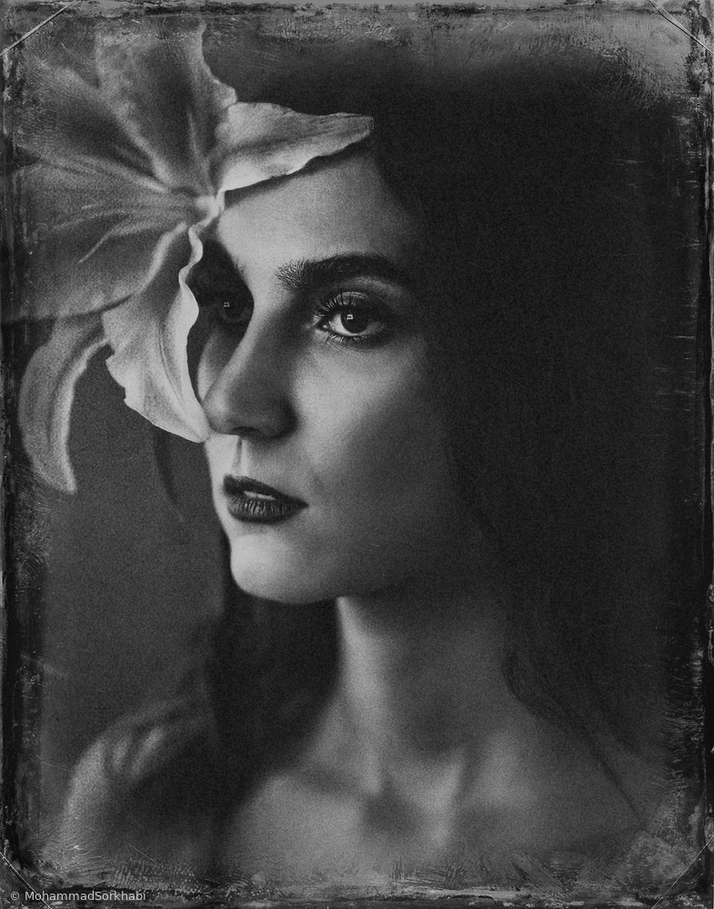 Fotokonst Parisa
