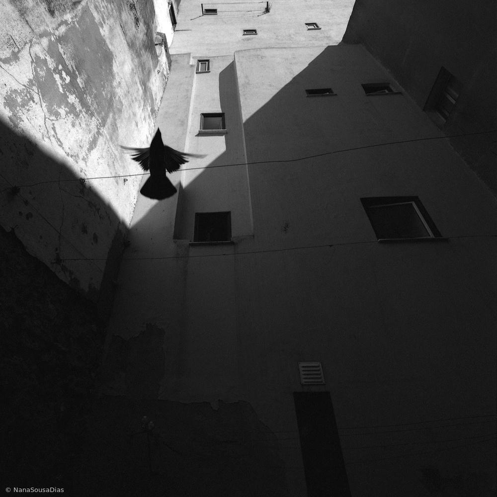Fotokonst Mouraria #2