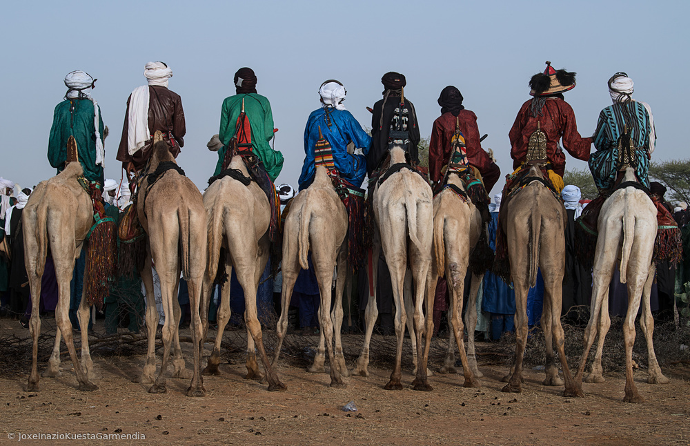Fotokonst Watching the gerewol festival from the camels - Niger