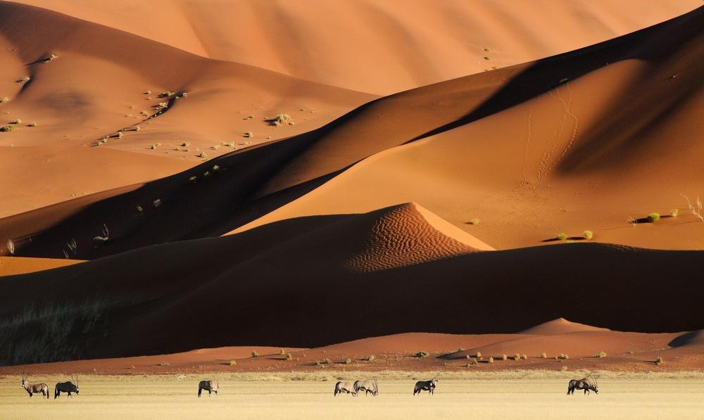 Poster Namib Dunes