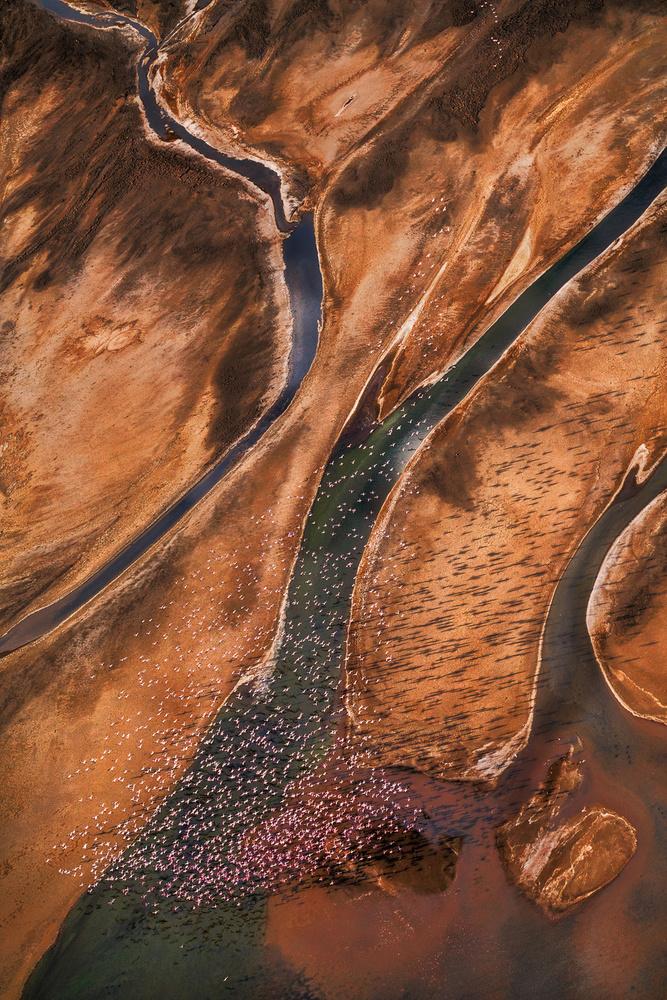 Fotokonst Flying over Palette