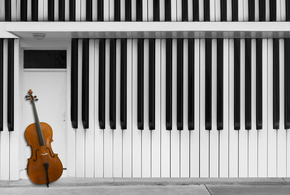 Poster Cello at the Door
