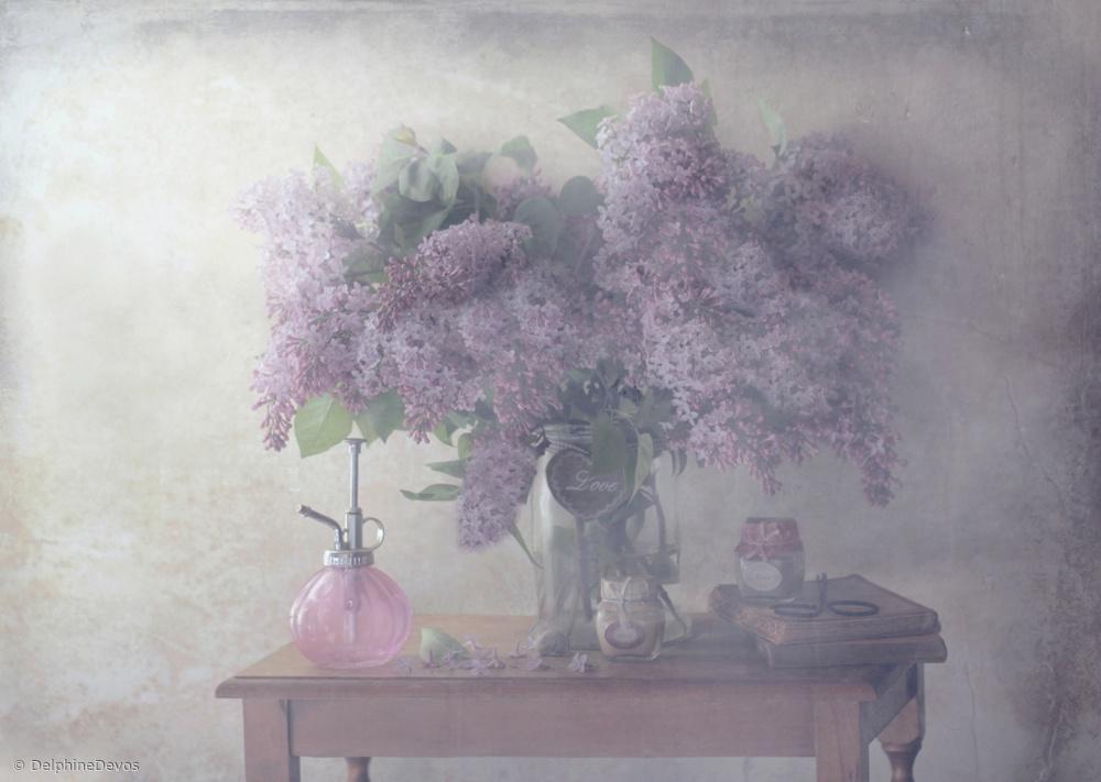 Fotokonst Sweet Lilacs