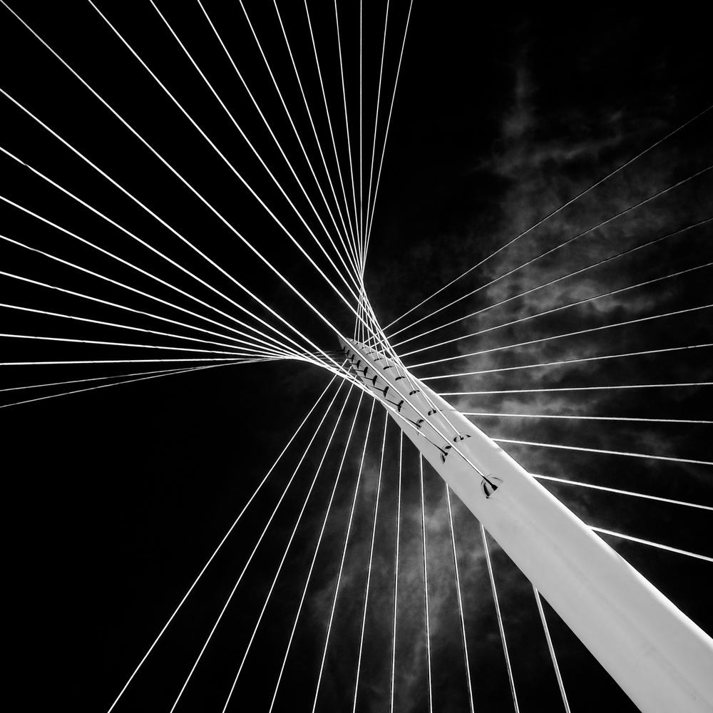 Fotokonst calatrava butterfly