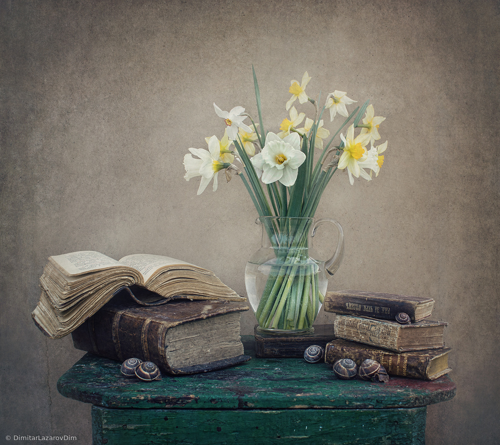 Fotokonst Still life with daffodils, old books and snails