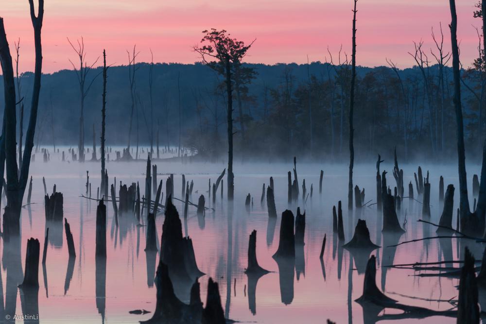 Fotokonst Lake @ Morning #2
