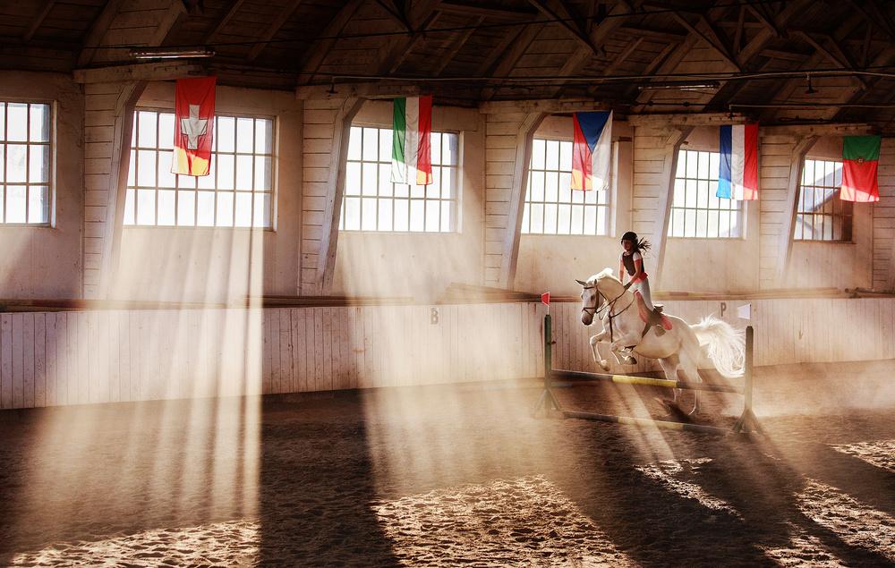 Fotokonst The White Stallion