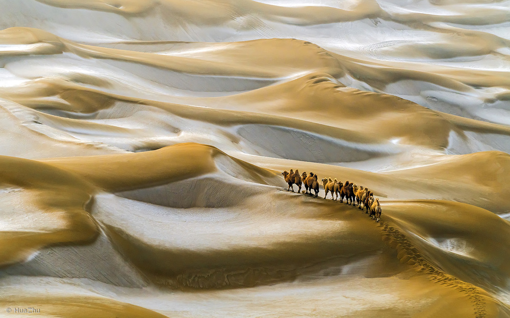 Fotokonst Desert Winter
