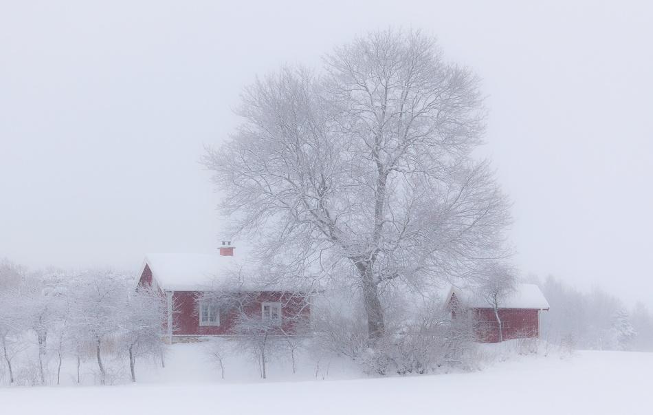 Poster Winter idyll