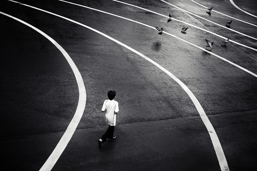 Poster Boy and Pigeons