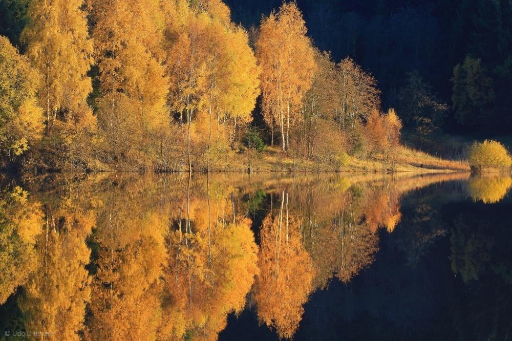 Fotokonst autumn reflection