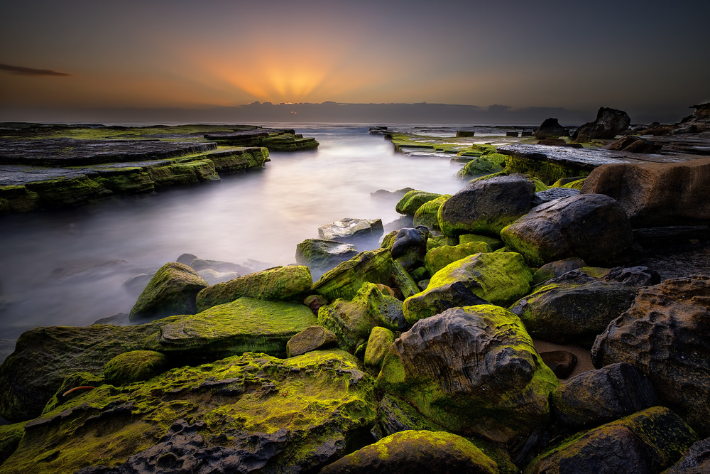 Fotokonst Turimetta green