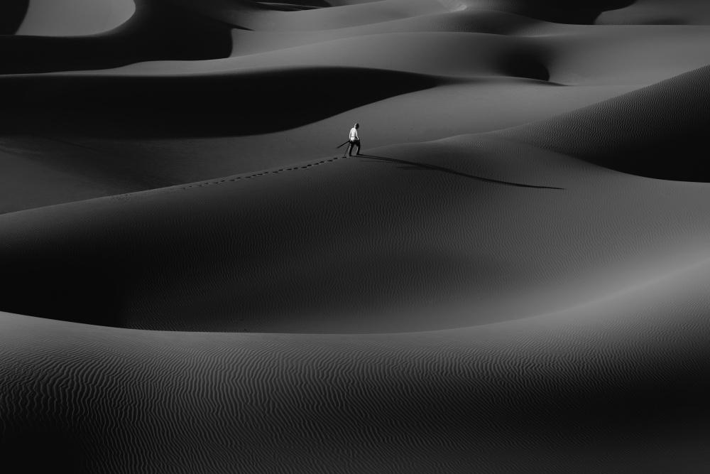 Poster Rhythm dunes