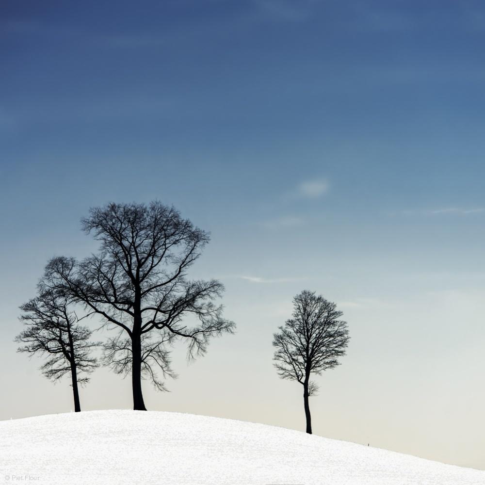Poster winter haiku