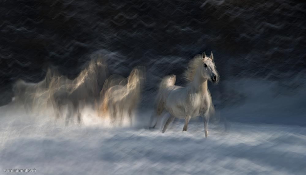 Fotokonst winter idyll