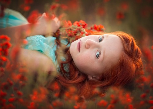 Field of Dreams by Lisa Holloway