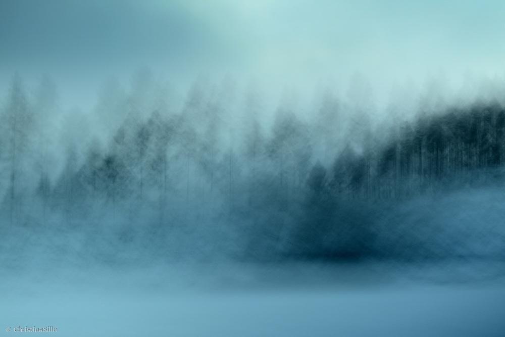 Fotokonst wintersaga