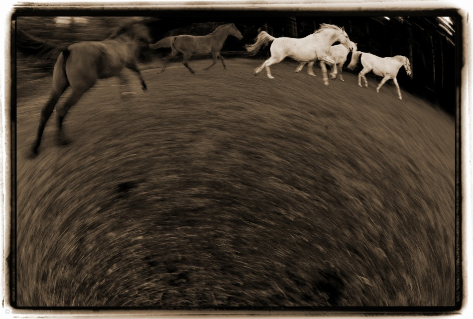 Fotokonst Circular motion