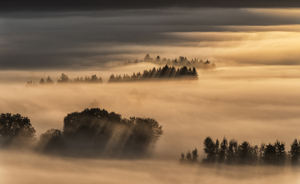 Poster Sea of fog...