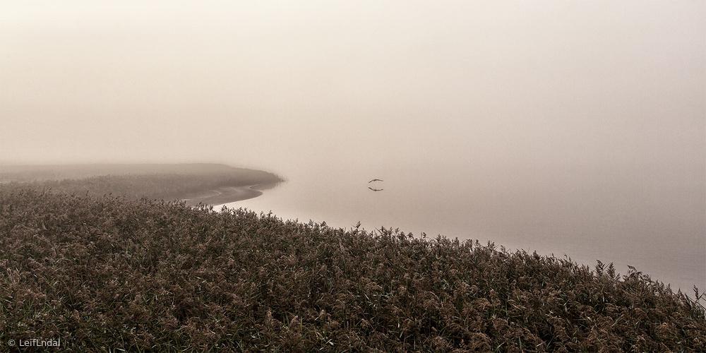 Fotokonst Morning silence.