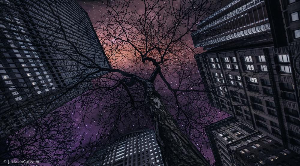 Fotokonst Interstelar