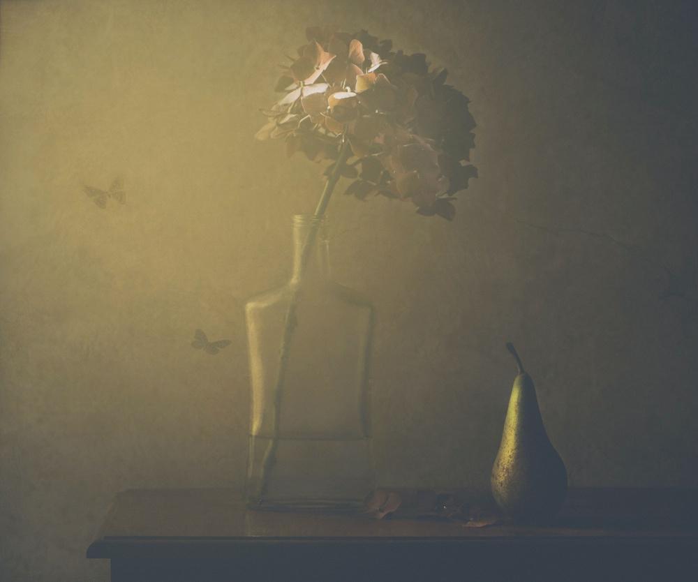 Fotokonst Hydrangea and pear