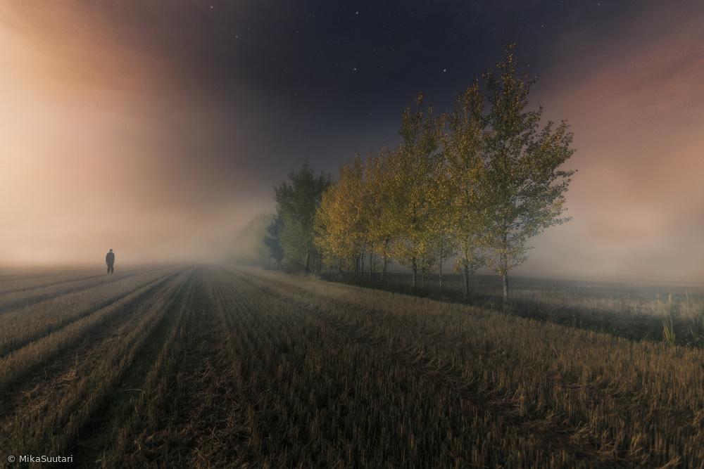 Fotokonst Last colors of autumn.