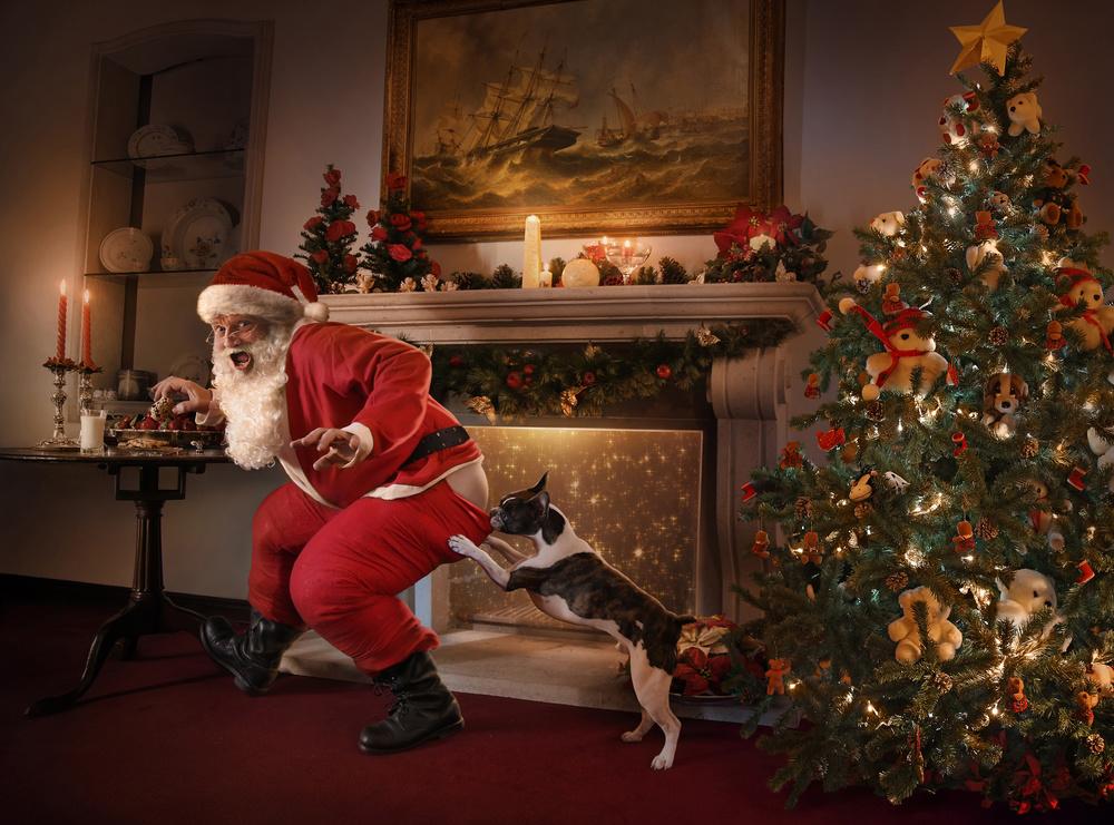 Fotokonst Santa was caught!