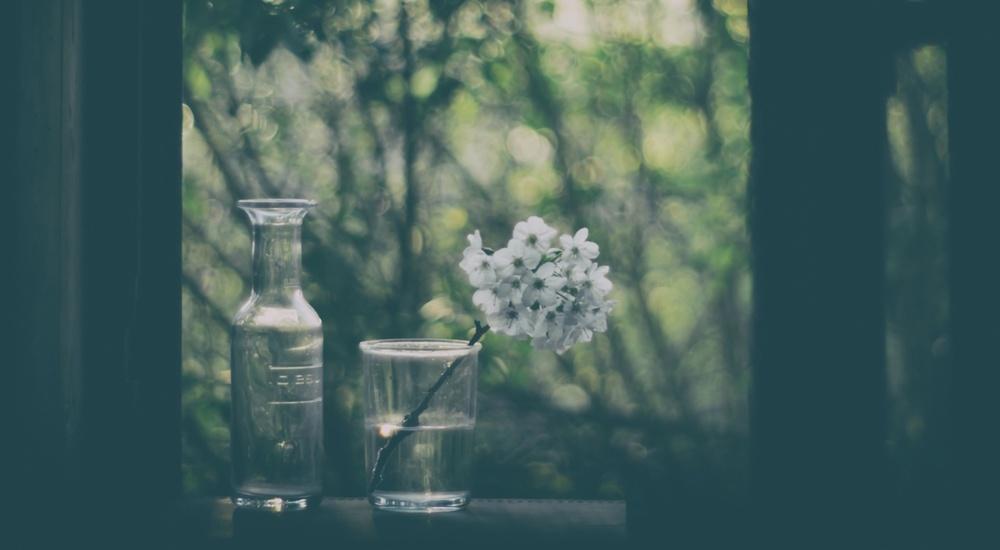 Fotokonst Through The Open Window
