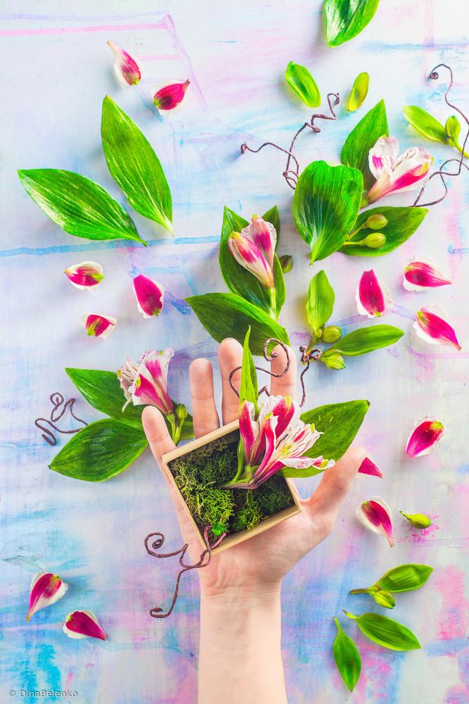 Fotokonst Hand full of spring