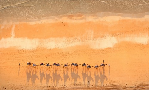Cable Beach camel train, Broome WA by Stuart Westmore