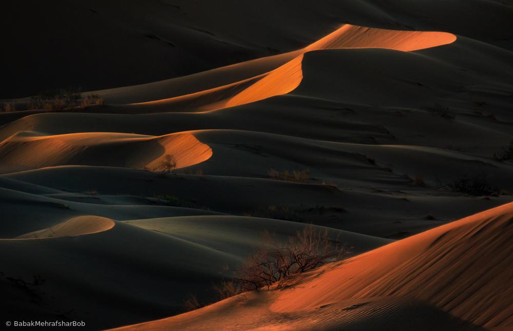 Fotokonst desert presence