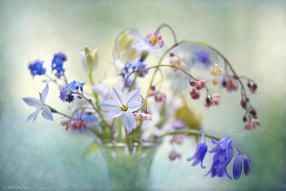 Fotokonst Spring Treasures