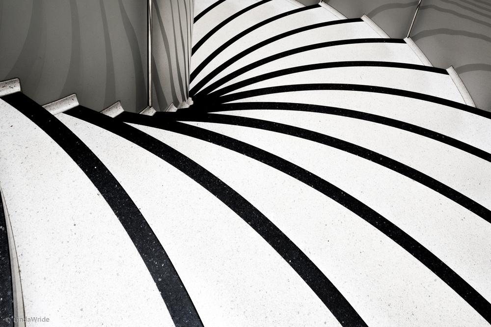 Fotokonst zebra steps