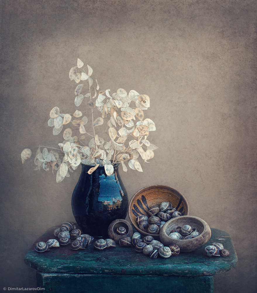 Fotokonst Still life with a lunaria and snails