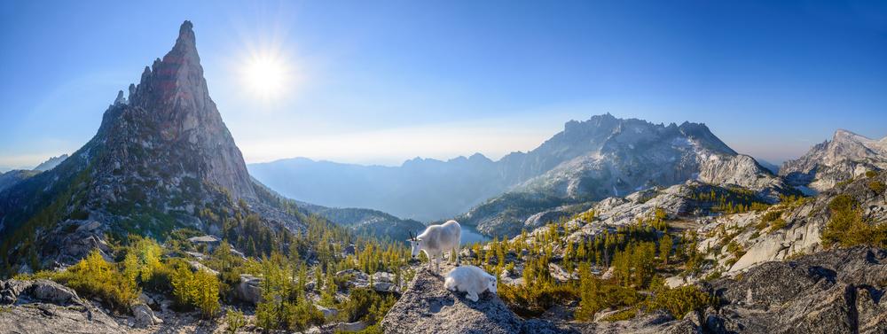 Enchantment: Prusik Pass Panorama