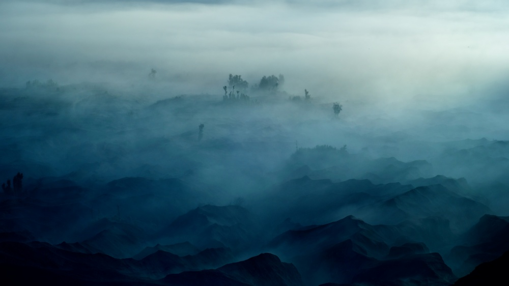 Poster Land of Fog